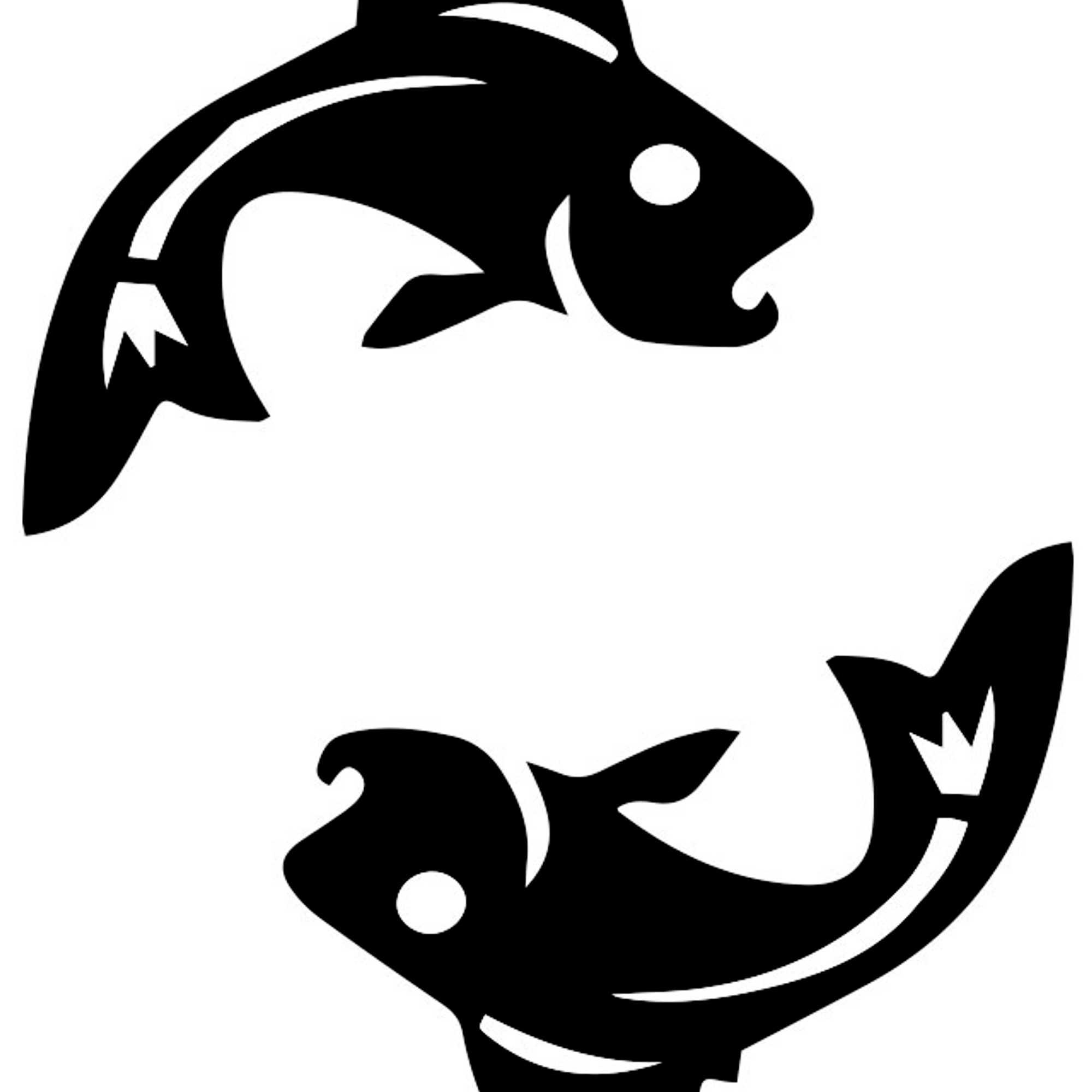 kalat ja rapu